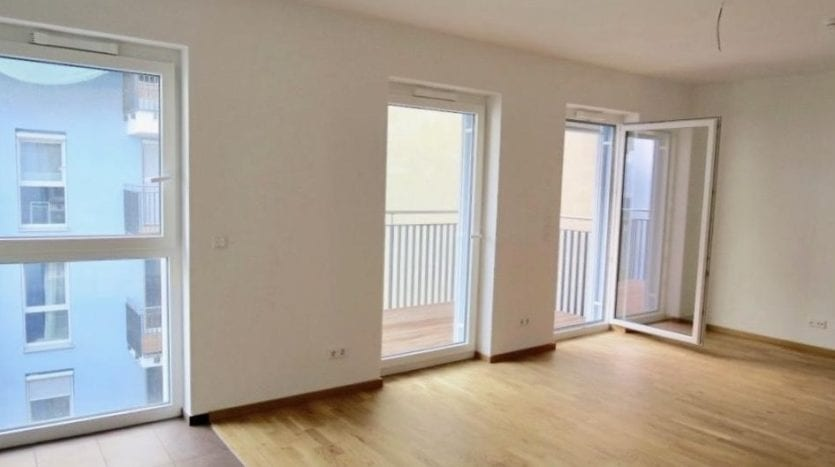 livingroom and kitchen, livingroom area